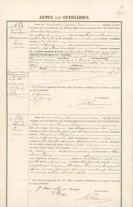 Levenloos Op den Brouw Sint Maartensdijk 26 juni 1900